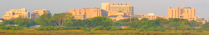 Galveston Medical Center Complex