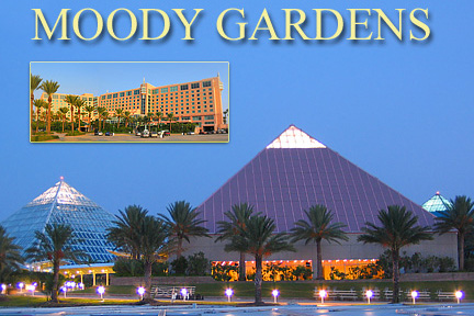 Moody Gardens Pyramids. Copyright George Hosek